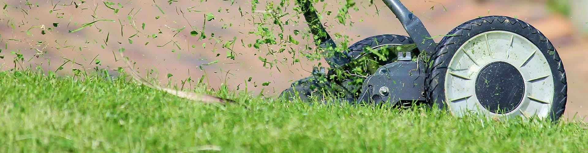 Koszenie, aeracja, wertykulacja, zakładanie trawnika